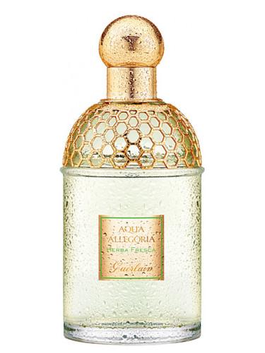 Najlepsze perfumy - Herba fresca